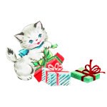 Cat and Christmas packages