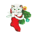 White Kitten in a Christmas Sock