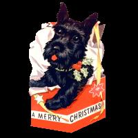 ChristmasPuppyinBox