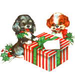 Dogs and Christmas present